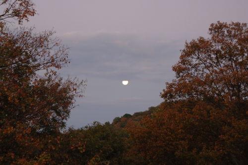 Oct moon 007