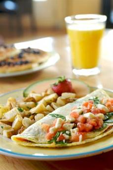 Cat_omelettes